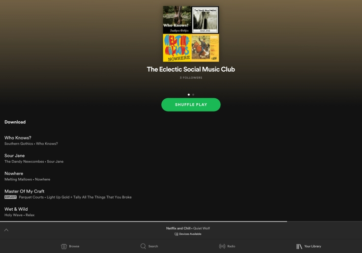 The Eclectic Social Music Club, Ryan Rebo, Quiet Wolf, The Dandy Newcombes, Melting Mallows, Southern Gothics, spotify playlist, spotify music